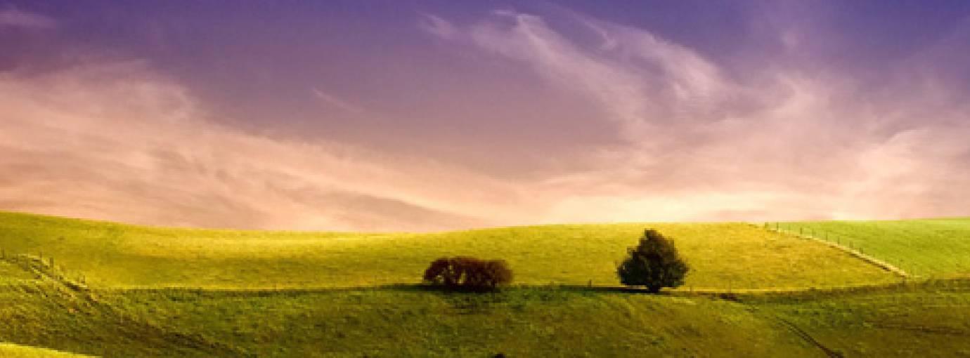 Ta'ziyah: The Sunnah Method of Consoling the Bereaved