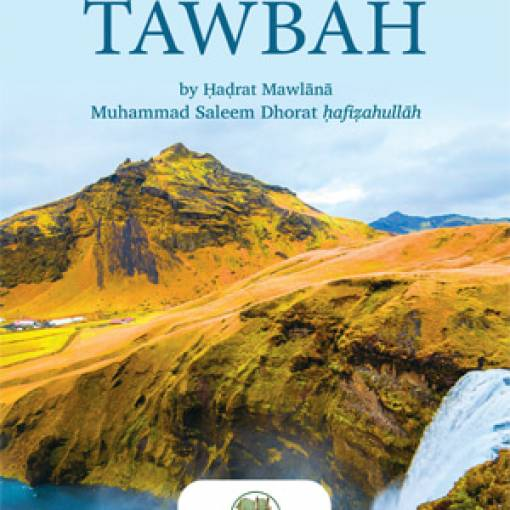 Returning Back to Allāh Through Tawbah