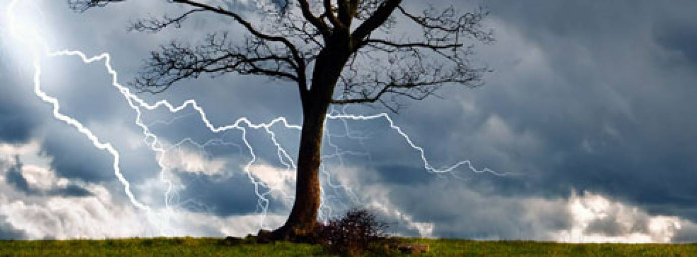 Wisdom Behind Natural Disasters